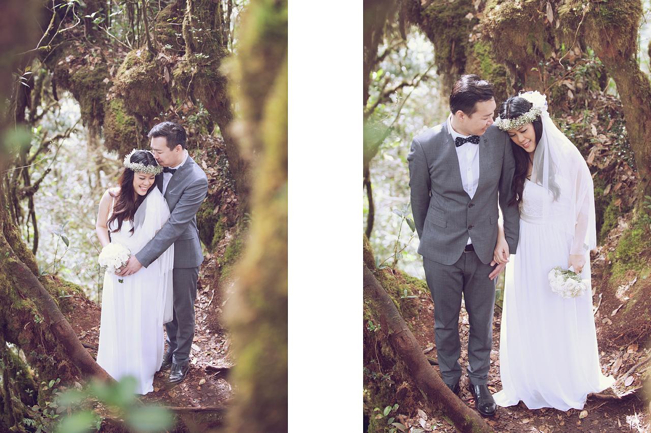 Mossy Forest Prewedding Prewedding Photography Cameron Highlands Malaysia
